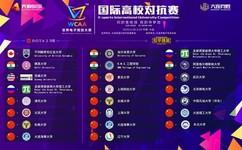 "WCAA赛事或成电竞""弄潮儿"" 为什么电子游戏被列为朝阳产业?"
