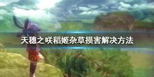 《天穗之咲稻姬》杂草损害怎么办 杂草损害解决方法